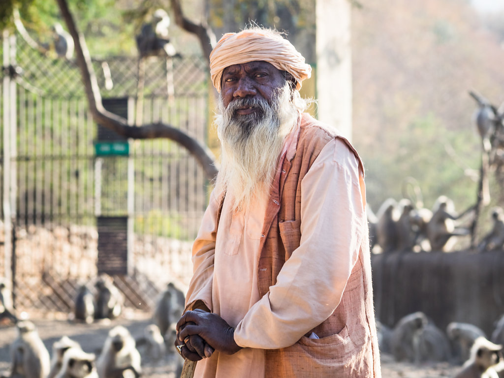 Old man and the apes, Pushkar - Rajasthan